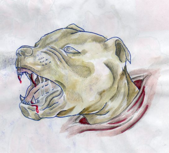 Dibujo realizado por el compañero Sebastián Oversluij Seguel.